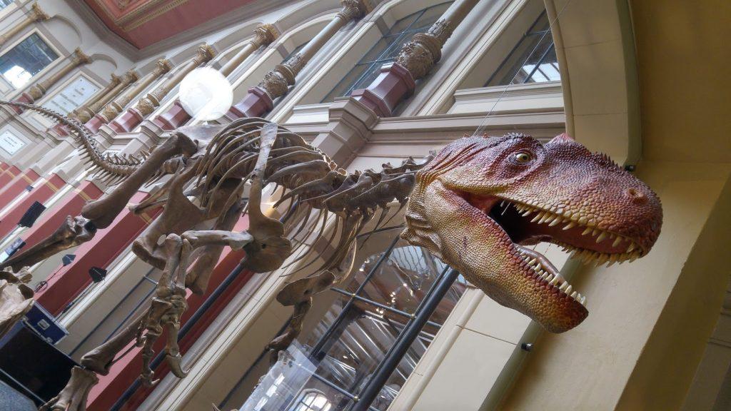 Muzeum Historii Naturalnej Berlin