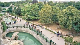Zoo, Wiedeń