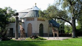 Tierpark Hellabrunn Zoo, Monachium